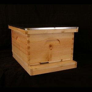 Assembled, Unpainted 1 Deep, Starter Hive w/  Wood bound frame and Wired Wax Foundation