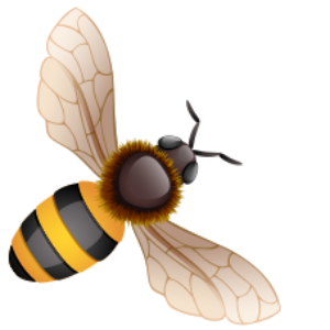 2019 Advanced Bee Biology – Sat Jun 22