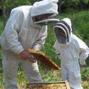 Learn To Keep Bees/Live @ the Hive – 4 Part Class